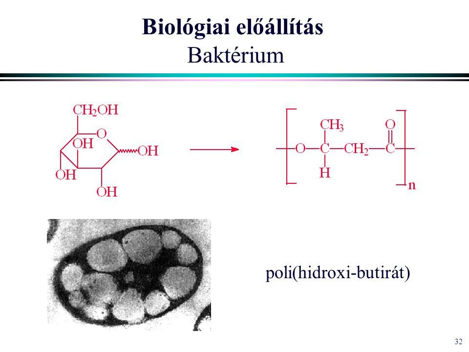 32 Biológiai előállítás Baktérium poli(hidroxi-butirát)