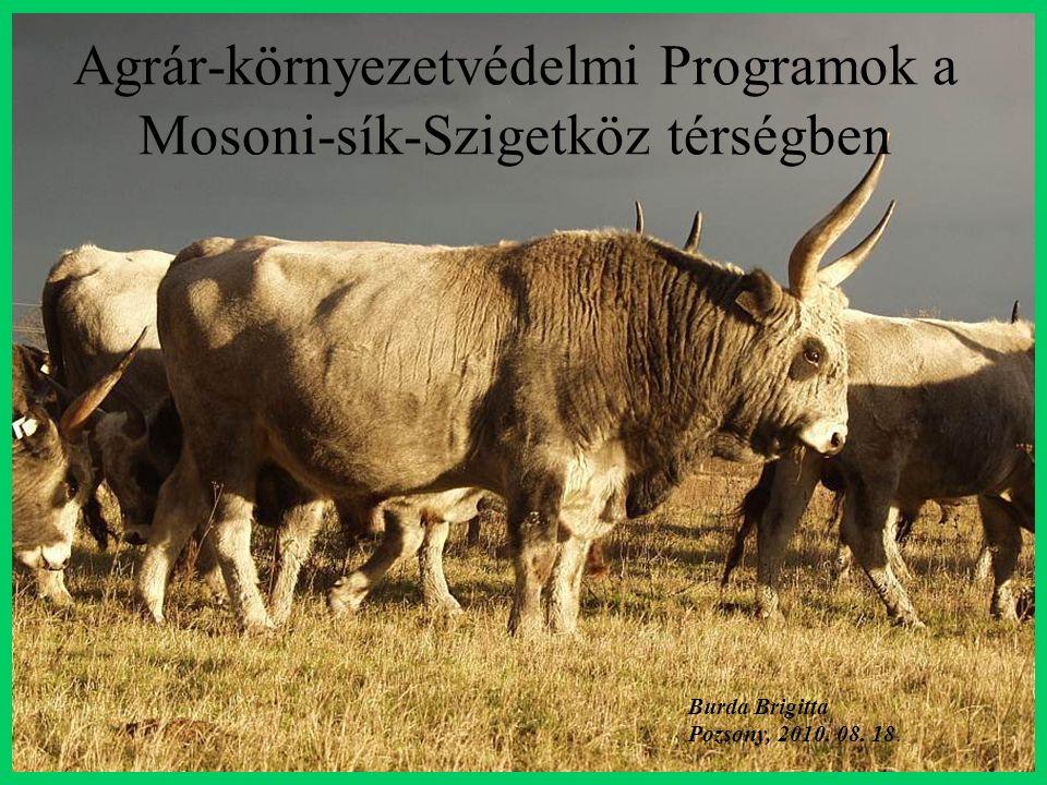 Agrár-környezetvédelmi Programok a Mosoni-sík-Szigetköz térségben Burda Brigitta Pozsony, 2010.
