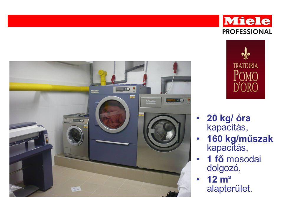 20 kg/ óra kapacitás, 160 kg/műszak kapacitás, 1 fő mosodai dolgozó, 12 m² alapterület.