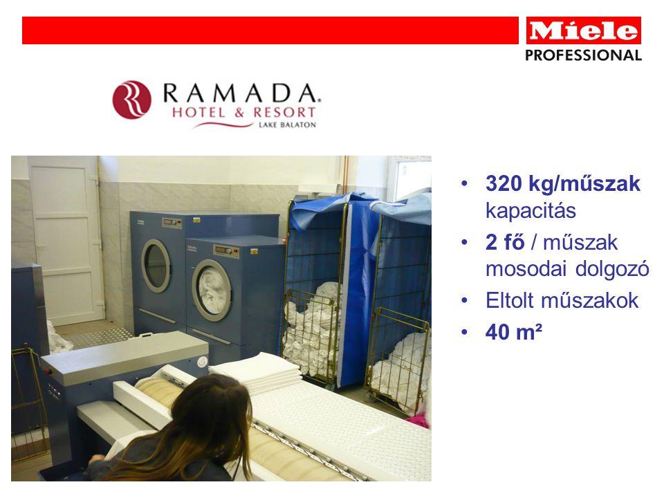 320 kg/műszak kapacitás 2 fő / műszak mosodai dolgozó Eltolt műszakok 40 m²