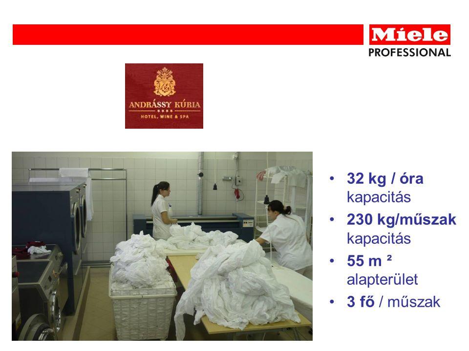 32 kg / óra kapacitás 230 kg/műszak kapacitás 55 m ² alapterület 3 fő / műszak