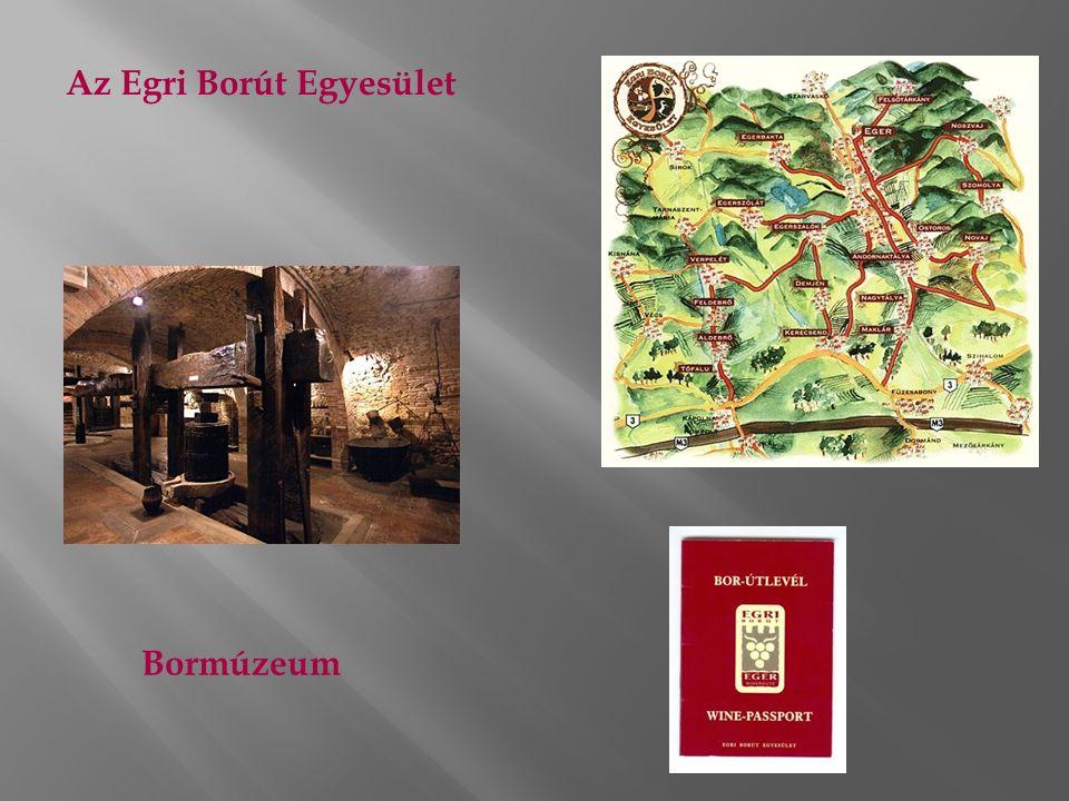 Az Egri Borút Egyesület Bormúzeum
