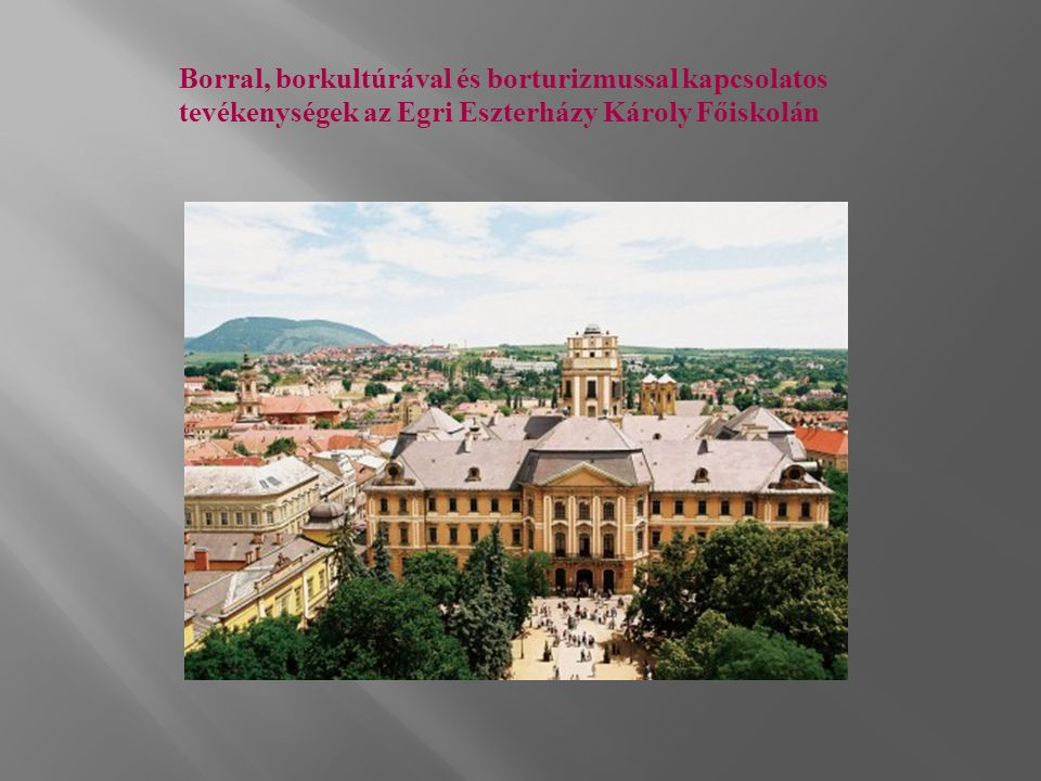 Borral, borkultúrával és borturizmussal kapcsolatos tevékenységek az Egri Eszterházy Károly Főiskolán