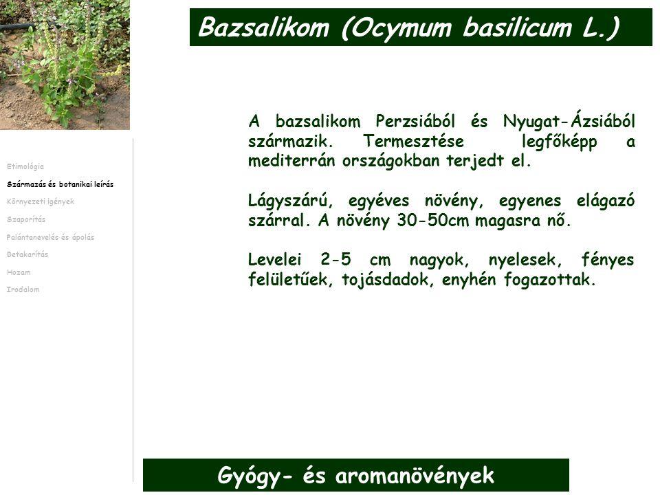 A bazsalikom Perzsiából és Nyugat-Ázsiából származik. Termesztése legfőképp a mediterrán országokban terjedt el. Lágyszárú, egyéves növény, egyenes el