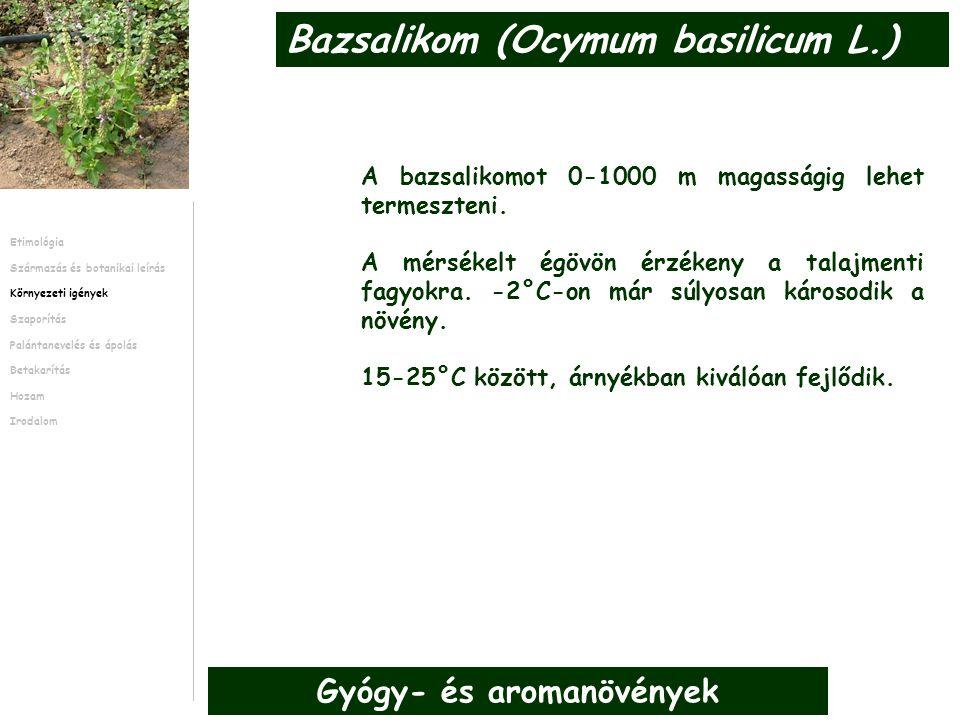 A bazsalikomot 0-1000 m magasságig lehet termeszteni.