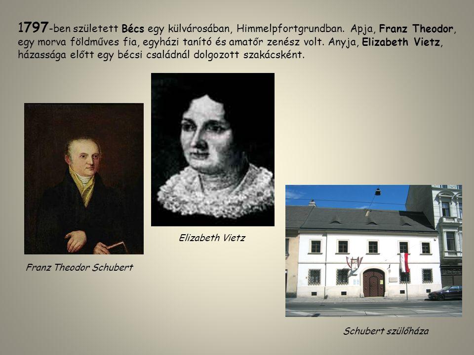 1797 -ben született Bécs egy külvárosában, Himmelpfortgrundban. Apja, Franz Theodor, egy morva földműves fia, egyházi tanító és amatőr zenész volt. An