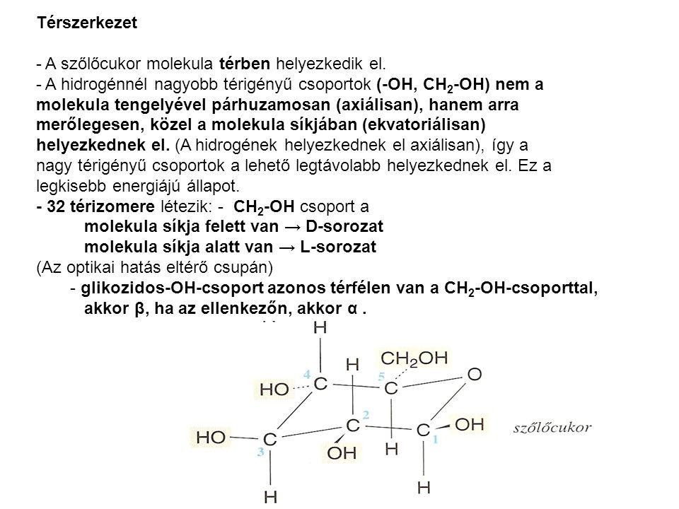 Térszerkezet - A szőlőcukor molekula térben helyezkedik el. - A hidrogénnél nagyobb térigényű csoportok (-OH, CH 2 -OH) nem a molekula tengelyével pár