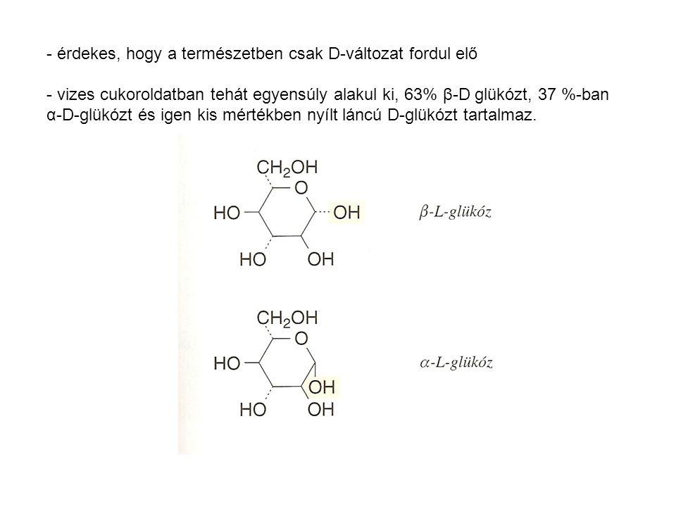 - érdekes, hogy a természetben csak D-változat fordul elő - vizes cukoroldatban tehát egyensúly alakul ki, 63% β-D glükózt, 37 %-ban α-D-glükózt és ig