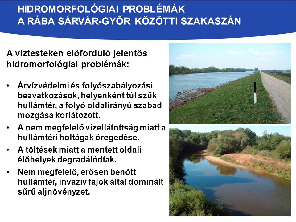 HIDROMORFOLÓGIAI PROBLÉMÁK A RÁBA SÁRVÁR-GYŐR KÖZÖTTI SZAKASZÁN A víztesteken előforduló jelentős hidromorfológiai problémák: Árvízvédelmi és folyószabályozási beavatkozások, helyenként túl szűk hullámtér, a folyó oldalirányú szabad mozgása korlátozott.