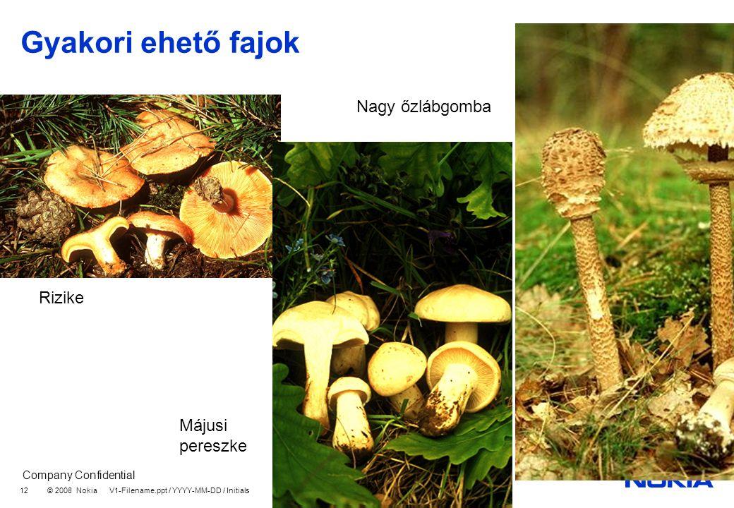 Company Confidential © 2008 Nokia V1-Filename.ppt / YYYY-MM-DD / Initials 12 Gyakori ehető fajok Rizike Májusi pereszke Nagy őzlábgomba
