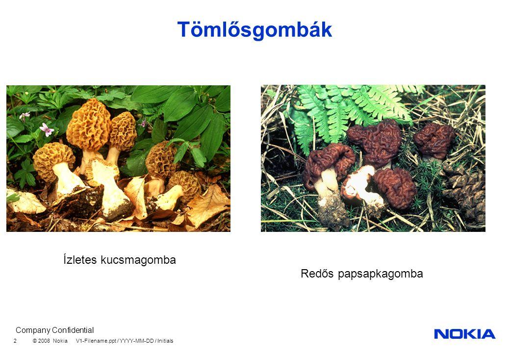 Company Confidential © 2008 Nokia V1-Filename.ppt / YYYY-MM-DD / Initials 2 Tömlősgombák Ízletes kucsmagomba Redős papsapkagomba