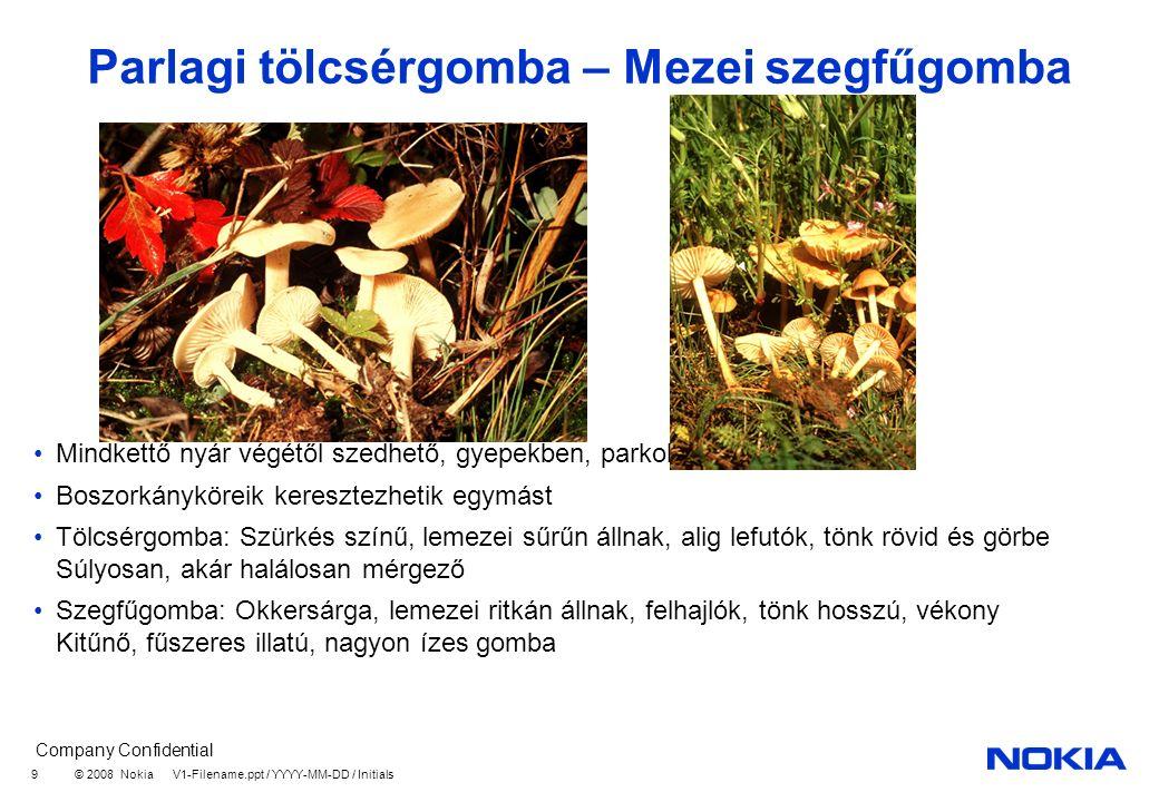 Company Confidential © 2008 Nokia V1-Filename.ppt / YYYY-MM-DD / Initials 9 Parlagi tölcsérgomba – Mezei szegfűgomba Mindkettő nyár végétől szedhető, gyepekben, parkok fűvében is Boszorkányköreik keresztezhetik egymást Tölcsérgomba: Szürkés színű, lemezei sűrűn állnak, alig lefutók, tönk rövid és görbe Súlyosan, akár halálosan mérgező Szegfűgomba: Okkersárga, lemezei ritkán állnak, felhajlók, tönk hosszú, vékony Kitűnő, fűszeres illatú, nagyon ízes gomba