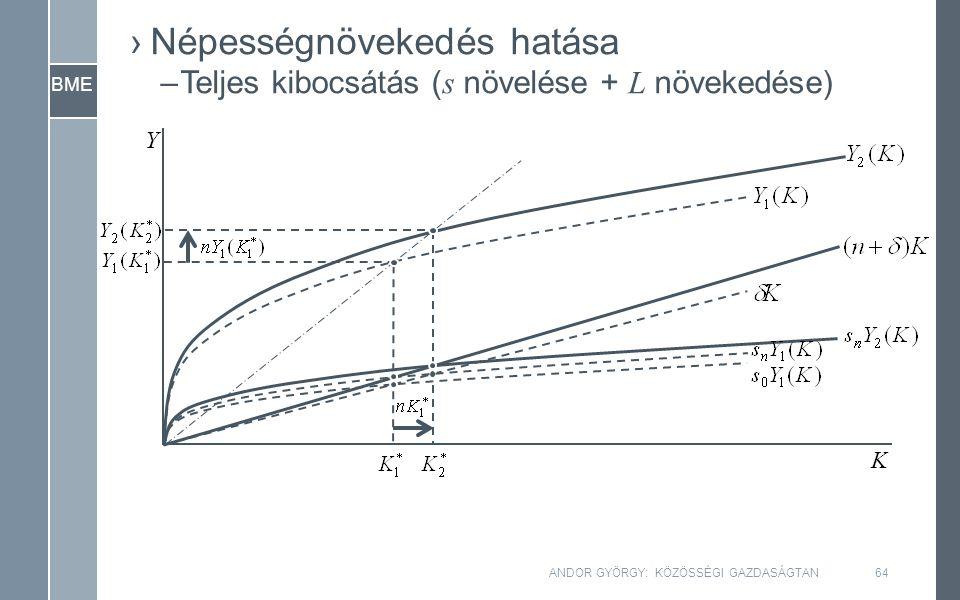 BME Y K ANDOR GYÖRGY: KÖZÖSSÉGI GAZDASÁGTAN64 ›Népességnövekedés hatása –Teljes kibocsátás ( s növelése + L növekedése)