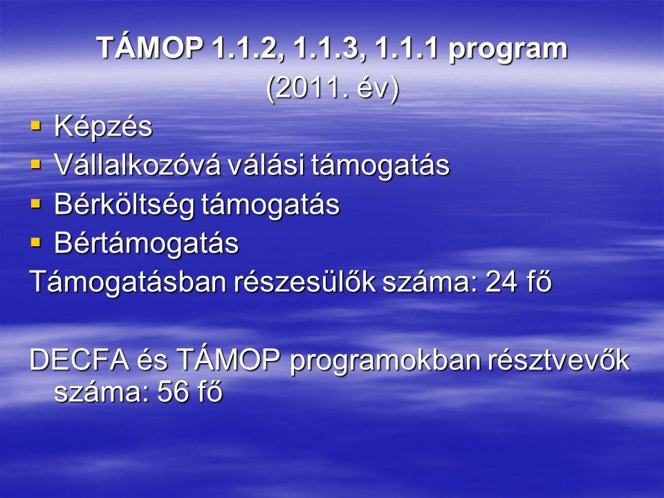 TÁMOP 1.1.2, 1.1.3, 1.1.1 program (2011. év)  Képzés  Vállalkozóvá válási támogatás  Bérköltség támogatás  Bértámogatás Támogatásban részesülők sz