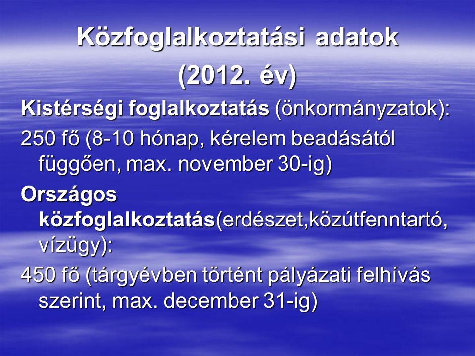 Közfoglalkoztatási adatok (2012. év) Kistérségi foglalkoztatás (önkormányzatok): 250 fő (8-10 hónap, kérelem beadásától függően, max. november 30-ig)