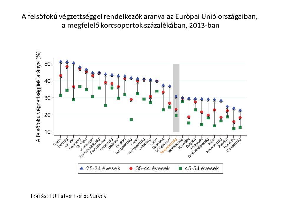 Forrás: KSH Munkaerő felmérés A mérnök és bölcsész végzettségű diplomások munkaerő-piaci mutatói 2011-2013-ban 24-60 évesek