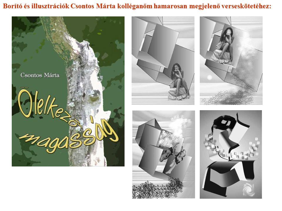 Borító és illusztrációk Csontos Márta kolléganőm hamarosan megjelenő verseskötetéhez: