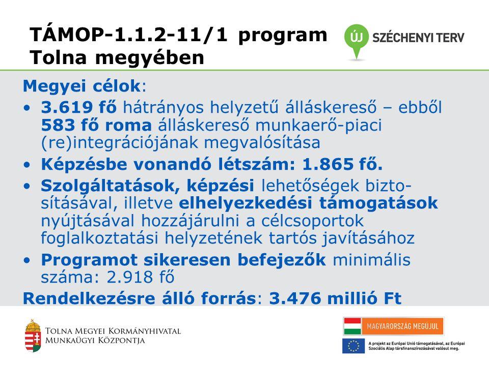 TÁMOP-1.1.2-11/1 program Tolna megyében Megyei célok: 3.619 fő hátrányos helyzetű álláskereső – ebből 583 fő roma álláskereső munkaerő-piaci (re)integrációjának megvalósítása Képzésbe vonandó létszám: 1.865 fő.
