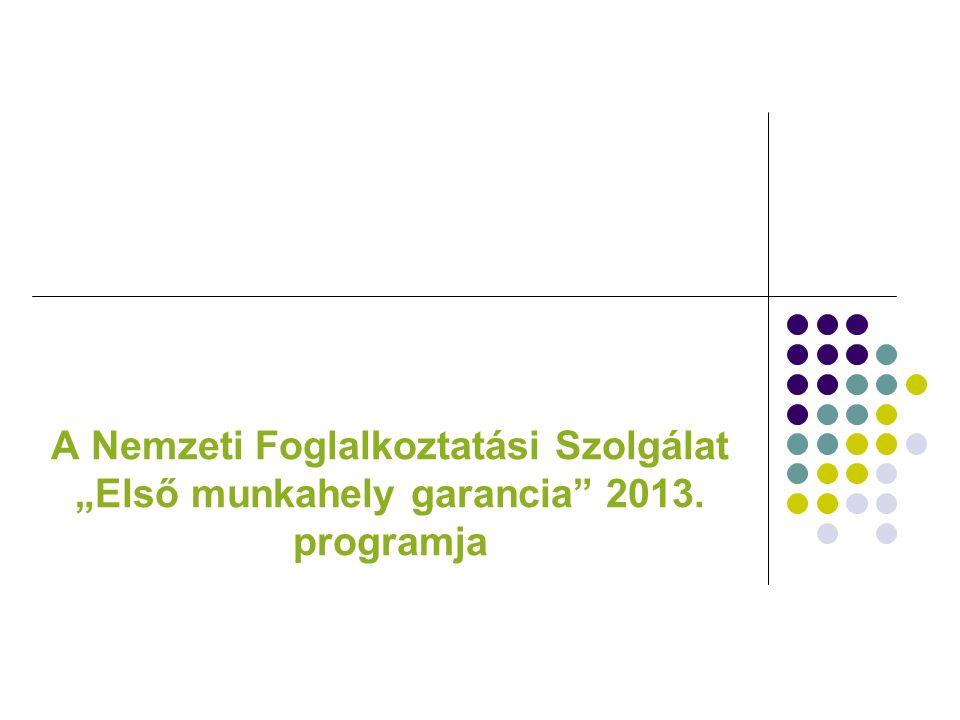 """A Nemzeti Foglalkoztatási Szolgálat """"Első munkahely garancia 2013. programja"""