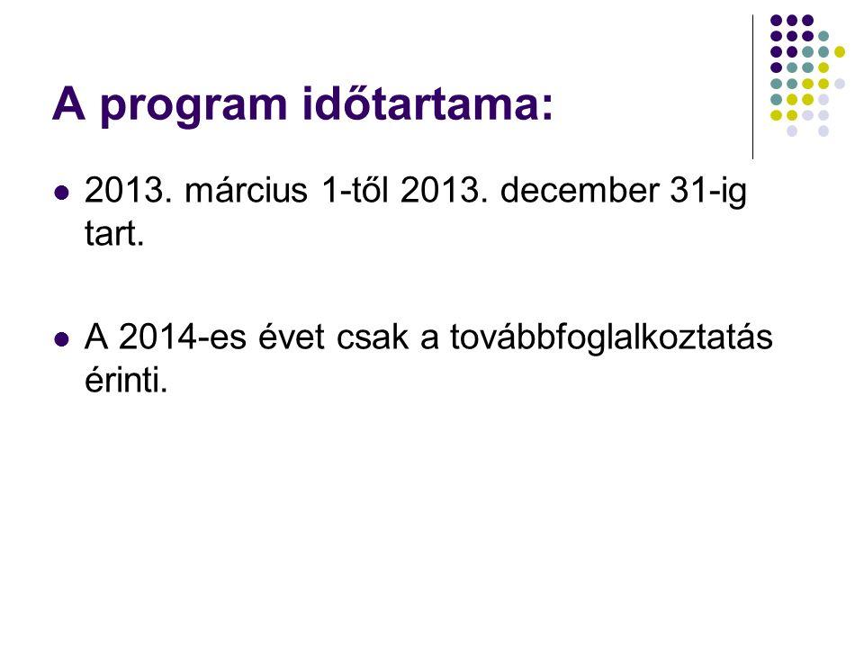 A program időtartama: 2013.március 1-től 2013. december 31-ig tart.