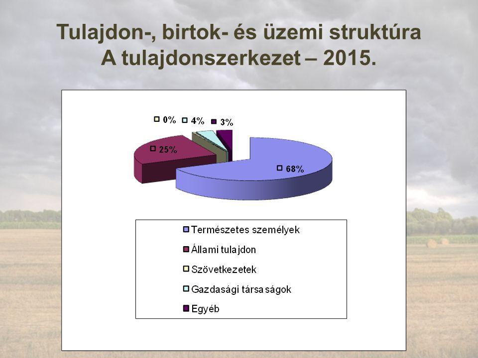 Tulajdon-, birtok- és üzemi struktúra A tulajdonszerkezet – 2015.