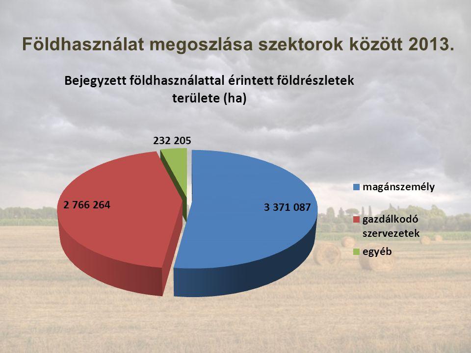 Földhasználat megoszlása szektorok között 2013.