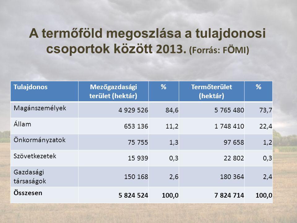 A termőföld megoszlása a tulajdonosi csoportok között 2013.