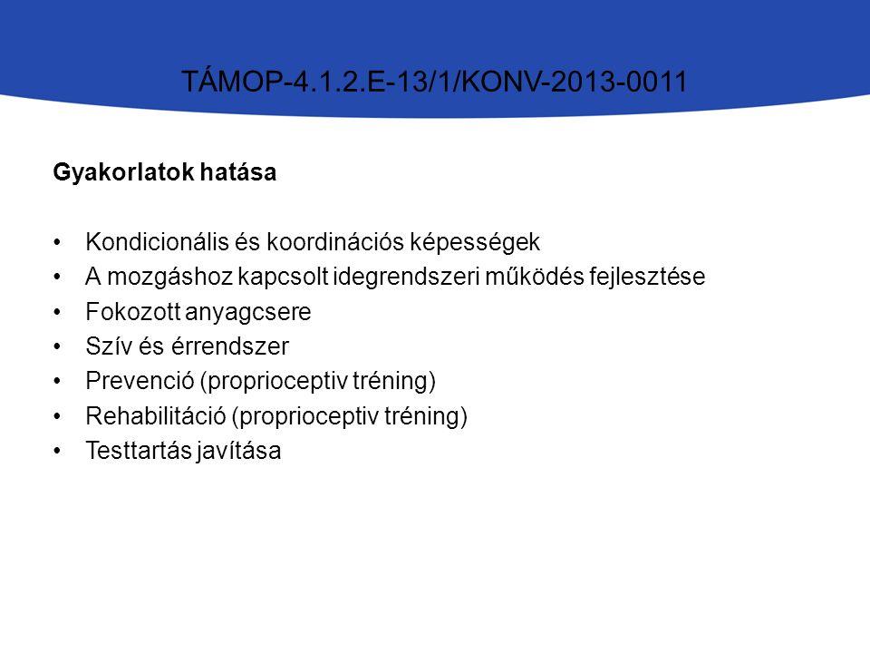 GyakorlataiEszközökkelEgyensúlyEgyéb Saját testsúllyal TÁMOP-4.1.2.E-13/1/KONV-2013-0011