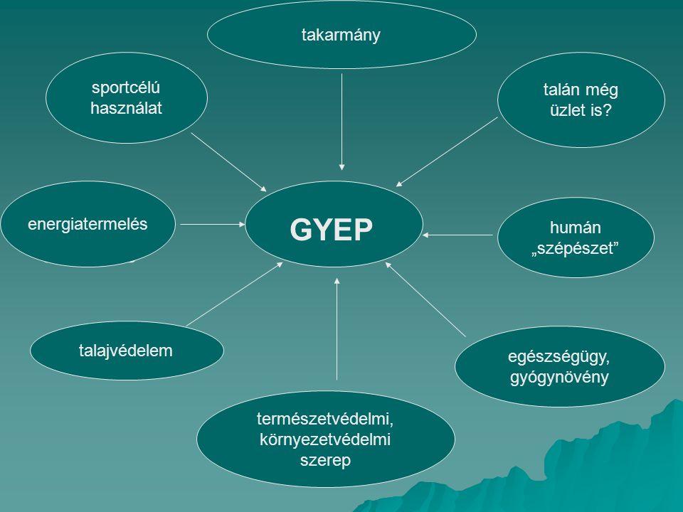 GYEP természetvédelmi, környezetvédelmi szerep takarmány sportcélú használat energia- termelés talajvédelem talán még üzlet is.