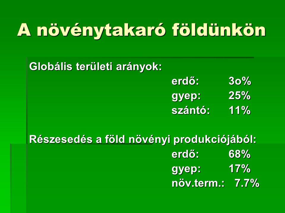 A növénytakaró földünkön Globális területi arányok: erdő:3o% gyep:25% szántó:11% Részesedés a föld növényi produkciójából: erdő:68% gyep:17% növ.term.