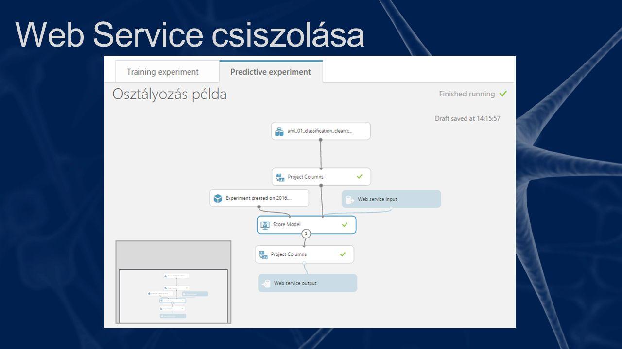 Web Service csiszolása