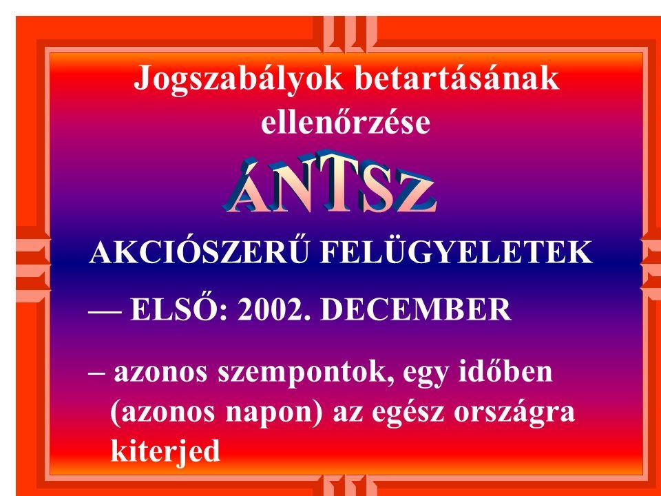 AKCIÓSZERŰ FELÜGYELETEK — ELSŐ: 2002.