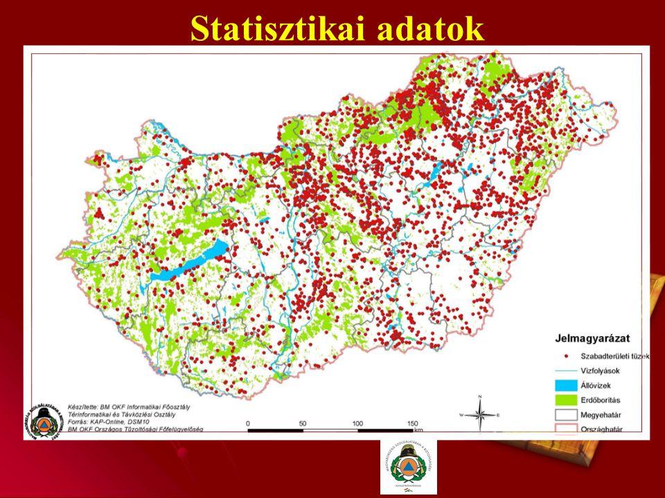 Az erdőtüzek 2.A második veszélyeztetett időszak a nyári hónapokra esik, amikor a hosszabb csapadékmentes, forró időjárási viszonyok következtében az erdei avar és tűlevélréteg teljesen kiszárad.