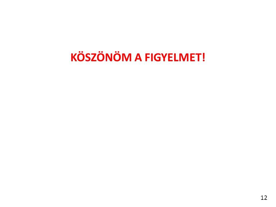 KÖSZÖNÖM A FIGYELMET! 12