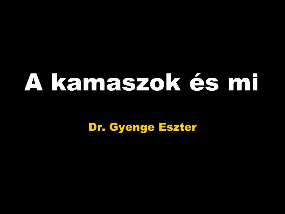 A kamaszok és mi Dr. Gyenge Eszter