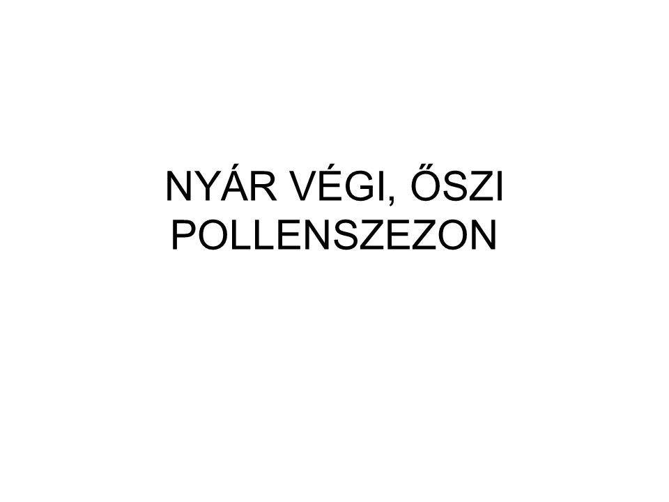 NYÁR VÉGI, ŐSZI POLLENSZEZON
