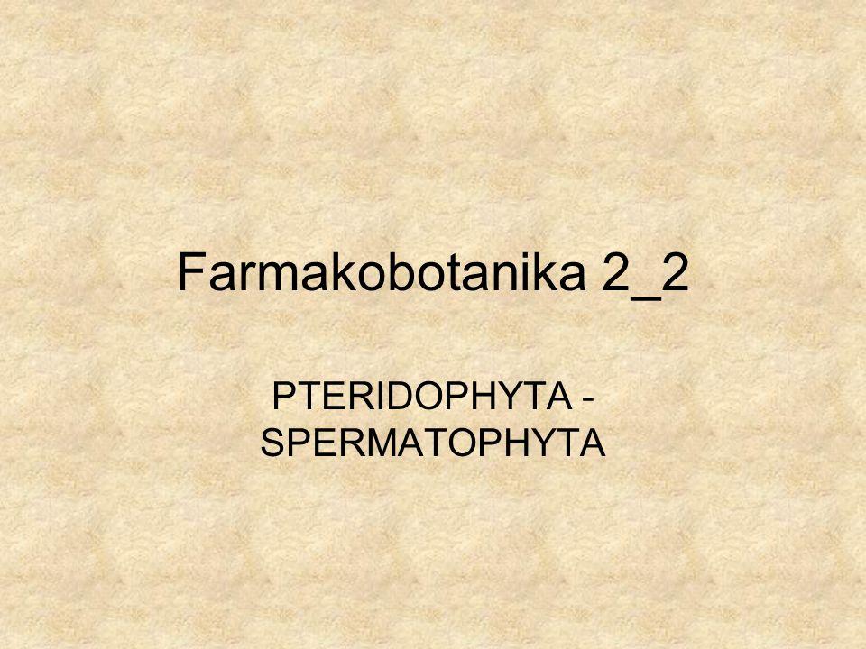 Farmakobotanika 2_2 PTERIDOPHYTA - SPERMATOPHYTA