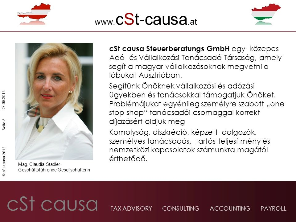 cSt causa TAX ADVISORY CONSULTING ACCOUNTING PAYROLL © cSt-causa 2013 24.09.2013 www.