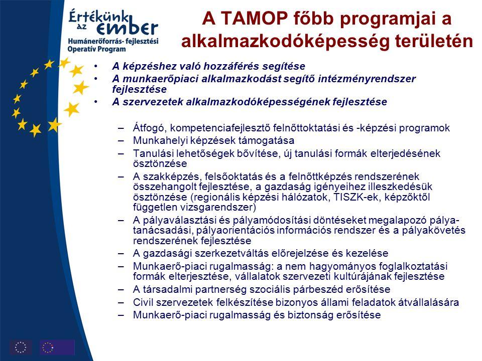 A TAMOP főbb programjai a alkalmazkodóképesség területén A képzéshez való hozzáférés segítése A munkaerőpiaci alkalmazkodást segítő intézményrendszer fejlesztése A szervezetek alkalmazkodóképességének fejlesztése –Átfogó, kompetenciafejlesztő felnőttoktatási és -képzési programok –Munkahelyi képzések támogatása –Tanulási lehetőségek bővítése, új tanulási formák elterjedésének ösztönzése –A szakképzés, felsőoktatás és a felnőttképzés rendszerének összehangolt fejlesztése, a gazdaság igényeihez illeszkedésük ösztönzése (regionális képzési hálózatok, TISZK-ek, képzőktől független vizsgarendszer) –A pályaválasztási és pályamódosítási döntéseket megalapozó pálya- tanácsadási, pályaorientációs információs rendszer és a pályakövetés rendszerének fejlesztése –A gazdasági szerkezetváltás előrejelzése és kezelése –Munkaerő-piaci rugalmasság: a nem hagyományos foglalkoztatási formák elterjesztése, vállalatok szervezeti kultúrájának fejlesztése –A társadalmi partnerség szociális párbeszéd erősítése –Civil szervezetek felkészítése bizonyos állami feladatok átvállalására –Munkaerő-piaci rugalmasság és biztonság erősítése