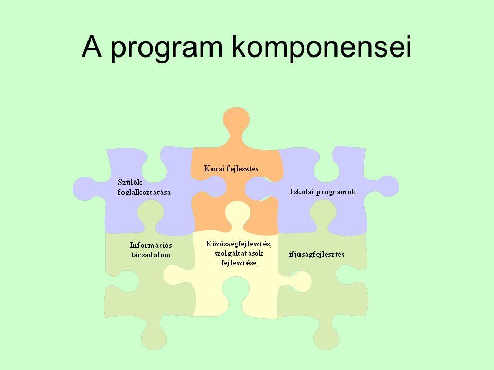 A program komponensei