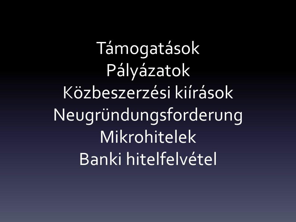 Támogatások Pályázatok Közbeszerzési kiírások Neugründungsforderung Mikrohitelek Banki hitelfelvétel
