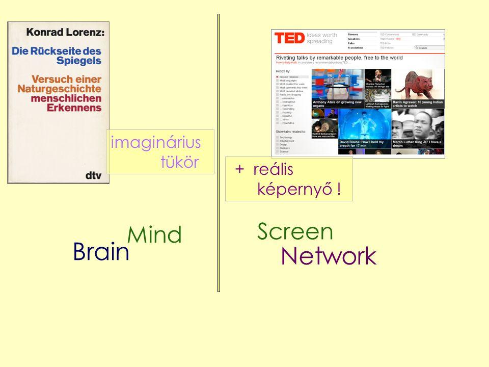 Mind Network Brain imaginárius tükör Screen + reális képernyő !