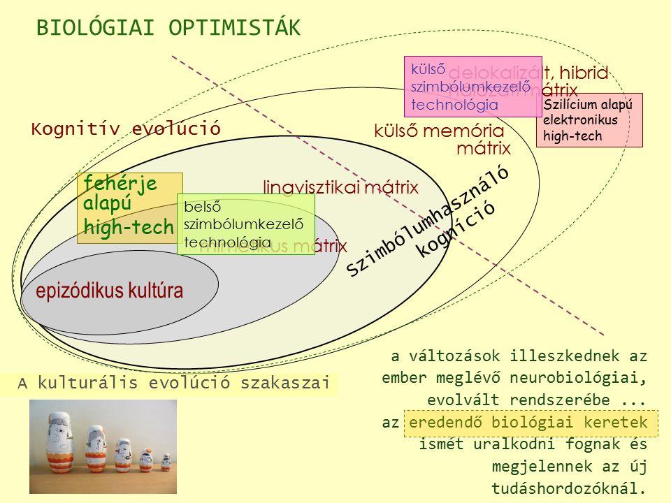 epizódikus kultúra Kognitív evolúció A kulturális evolúció szakaszai fehérje alapú high-tech Szilícium alapú elektronikus high-tech mimetikus mátrix lingvisztikai mátrix külső memória mátrix delokalizált, hibrid hálózati mátrix BIOLÓGIAI OPTIMISTÁK belső szimbólumkezelő technológia külső szimbólumkezelő technológia Szimbólumhasználó kogníció a változások illeszkednek az ember meglévő neurobiológiai, evolvált rendszerébe...