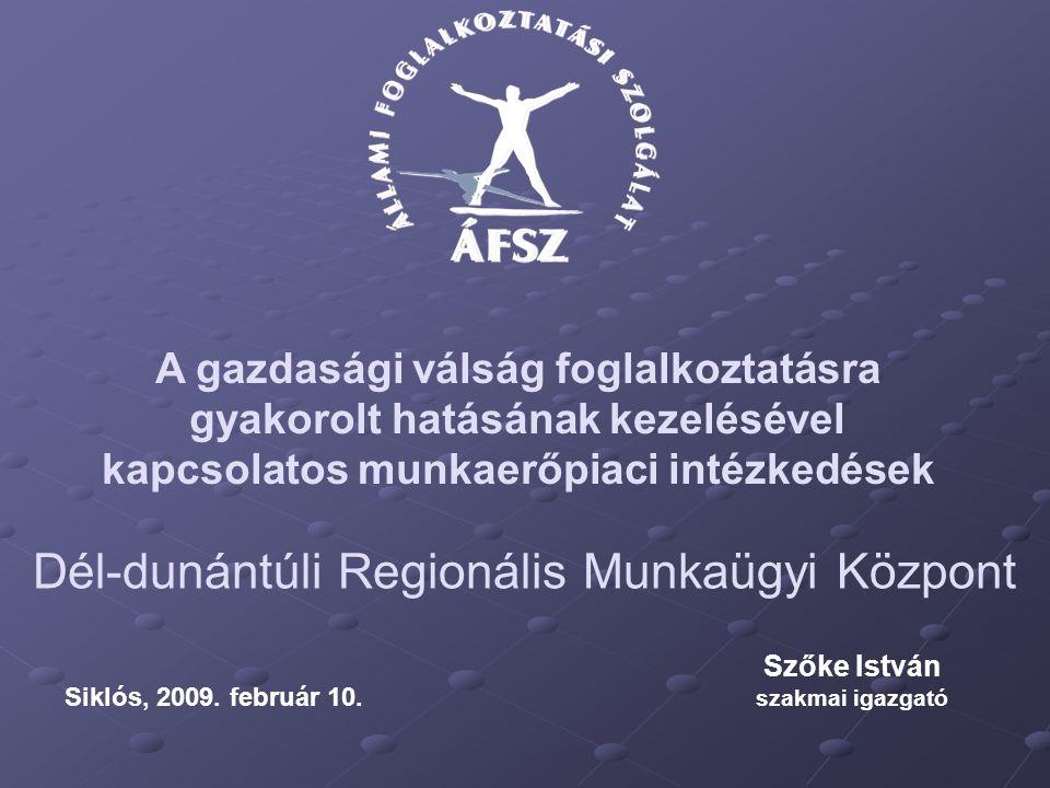 Dél-dunántúli Regionális Munkaügyi Központ Szőke István szakmai igazgató Siklós, 2009.