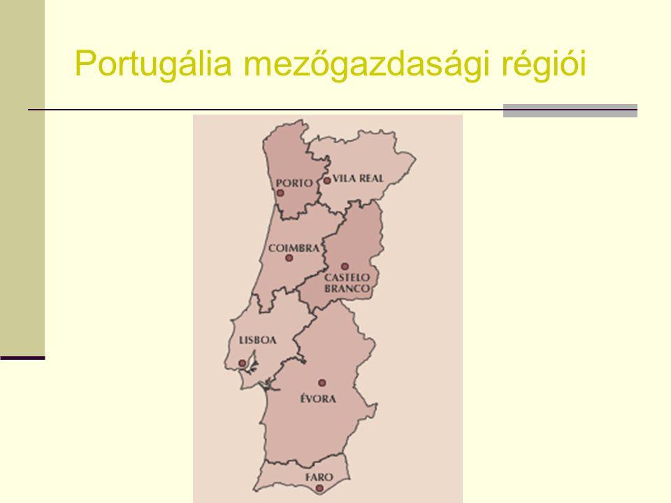 Ökológiai gazdálkodás – Portugália Portugáliának kitűnő adottságai vannak  Klimatikus adottságok  Őshonos és régen honosult fajok és fajták  Hagyom