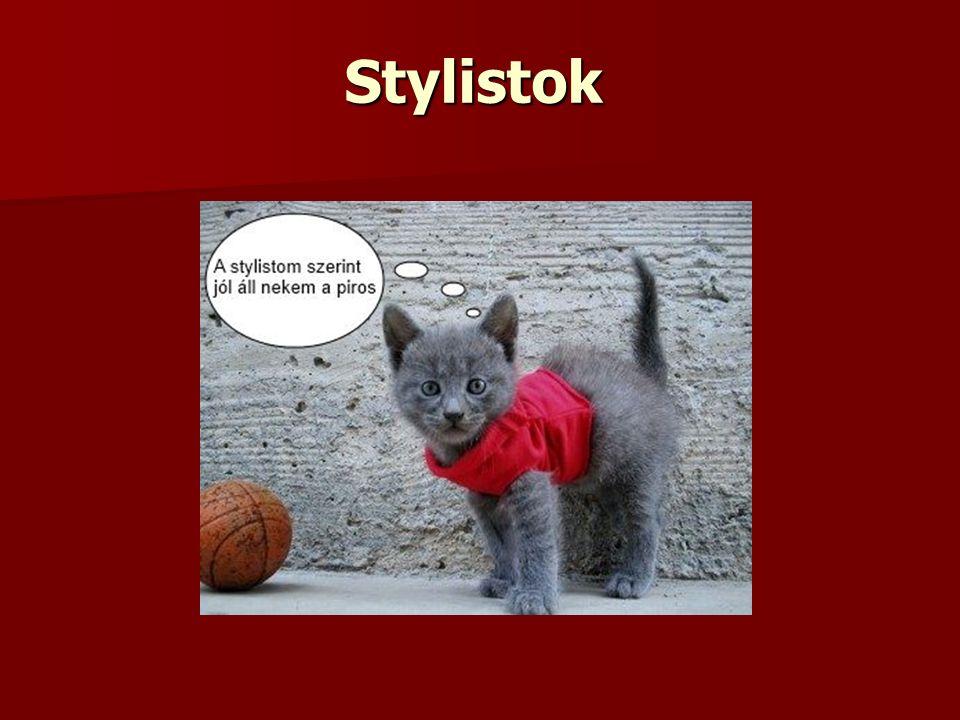 Stylistok