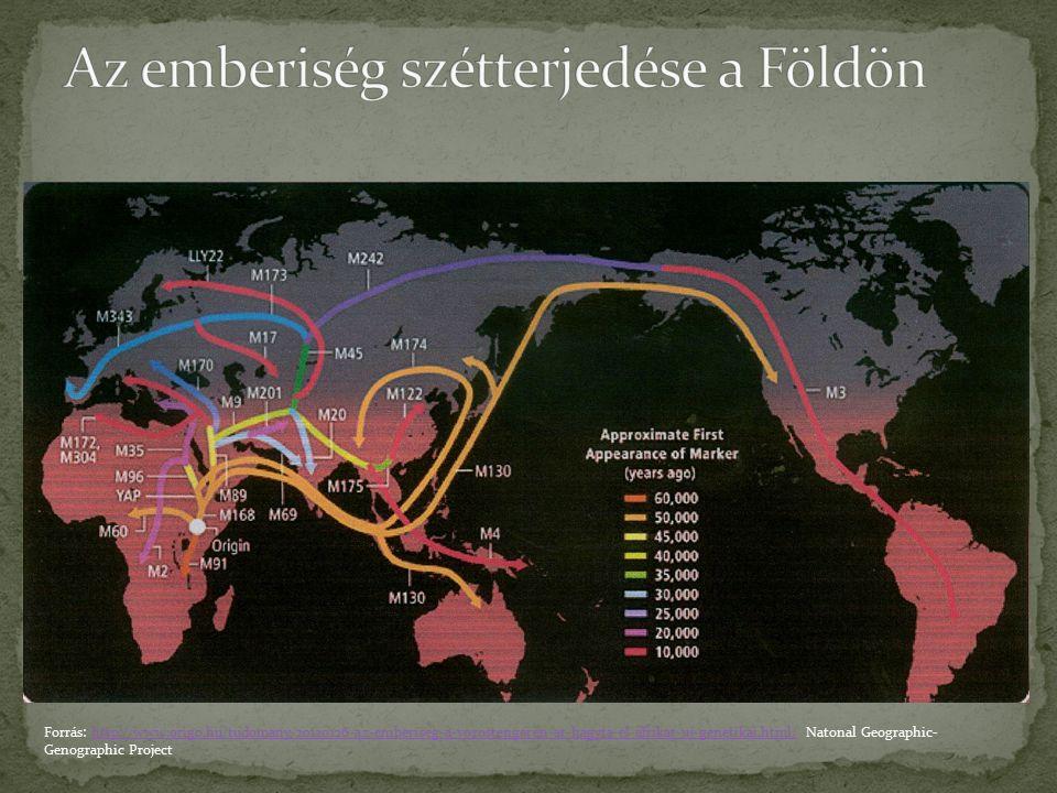 Forrás: http://www.origo.hu/tudomany/20120126-az-emberiseg-a-vorostengeren-at-hagyta-el-afrikat-uj-genetikai.html/ Natonal Geographic- Genographic Pro