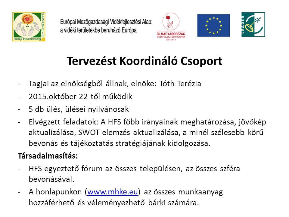 Tervezést Koordináló Csoport -Tagjai az elnökségből állnak, elnöke: Tóth Terézia -2015.október 22-től működik -5 db ülés, ülései nyilvánosak -Elvégzet