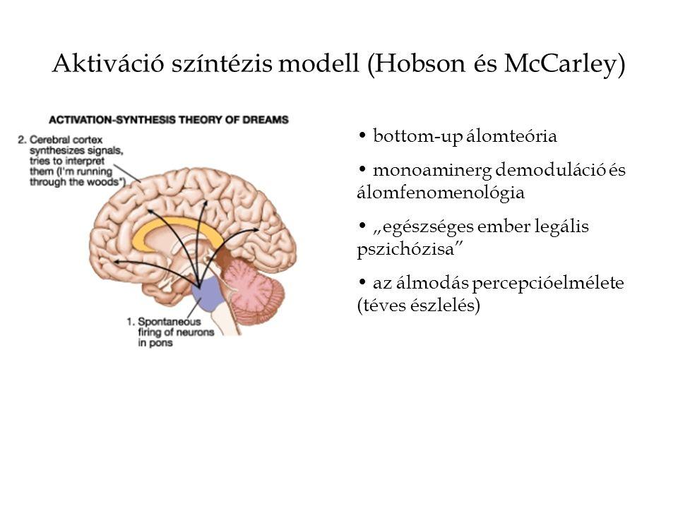 """Aktiváció színtézis modell (Hobson és McCarley) bottom-up álomteória monoaminerg demoduláció és álomfenomenológia """"egészséges ember legális pszichózis"""