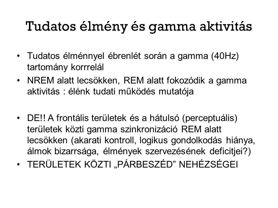 Tudatos élmény és gamma aktivitás Tudatos élménnyel ébrenlét során a gamma (40Hz) tartomány korrrelál NREM alatt lecsökken, REM alatt fokozódik a gamm